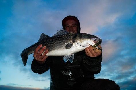 65cm PB Bass